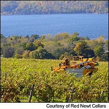 Photograph of mechanical harvester courtesy of Red Newt Cellars