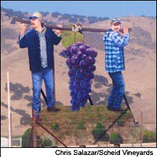 Photograph of Monterey County commissioned wine mural