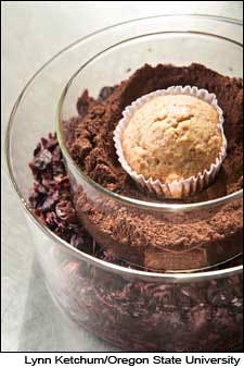 Photograph of pomace-fortified muffins by Lynn Ketchum.