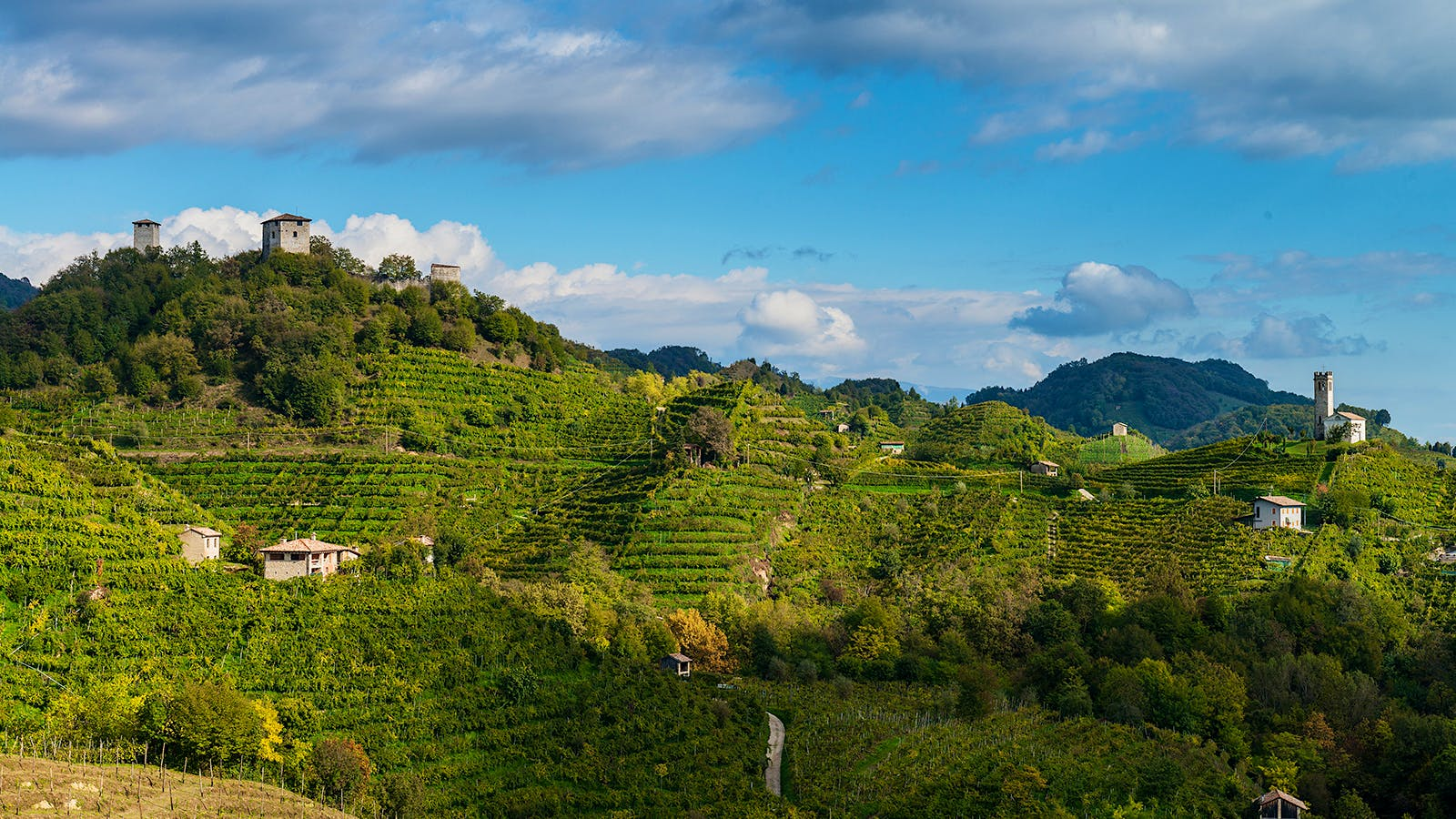Battle for the Soul of Prosecco