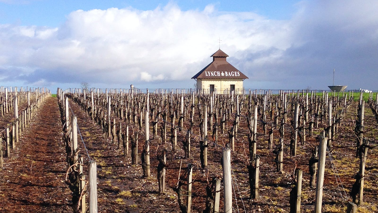 The 2015 Bordeaux Barrels Diary: A Smooth Operation at Lynch Bages