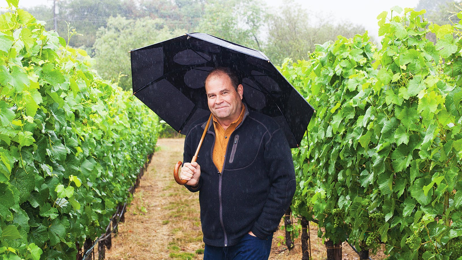 Purchasing Pinot: Ste. Michelle Wine Estates Buys Patz & Hall