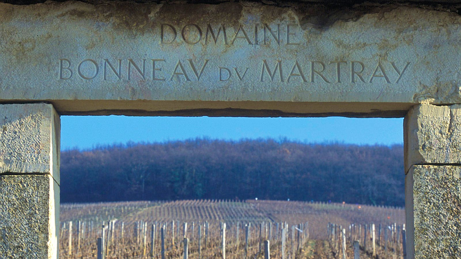 Screaming Eagle Owner Buys Majority Stake in Burgundy's Bonneau du Martray