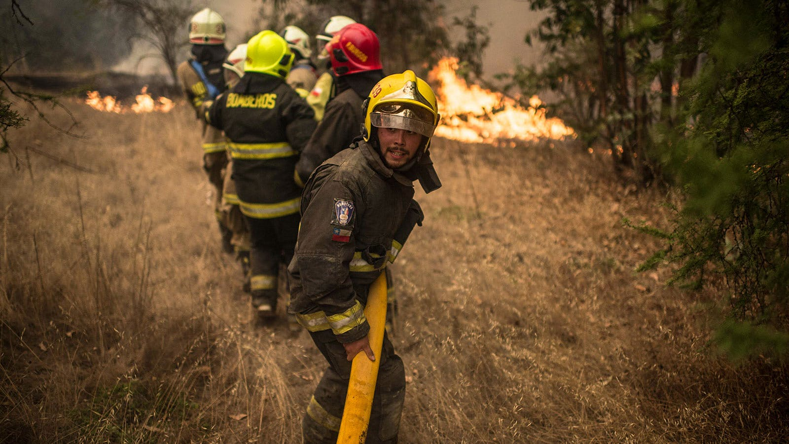 Wildfires Devastate Chilean Wine Country