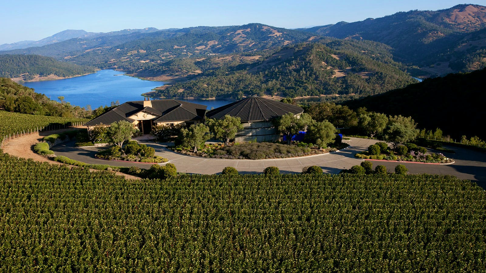 Napa's Colgin Cellars Sells Majority Stake to French Luxury Titan LVMH