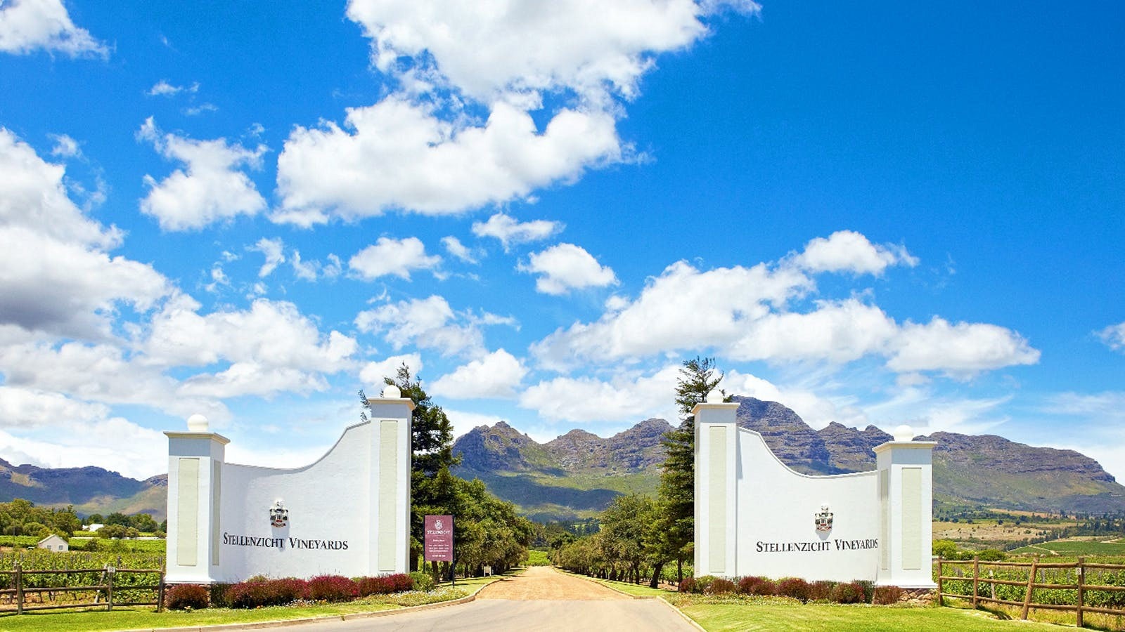 Exclusive: Ernie Els Wines Co-Owner Buys Historic South African Winery Stellenzicht