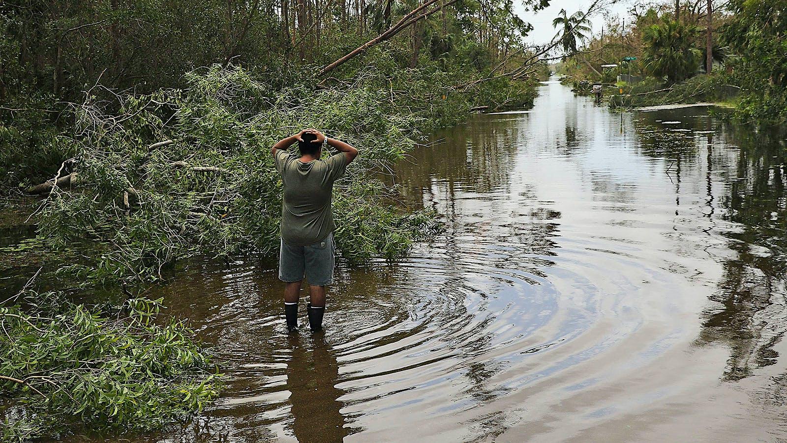 How Will Florida Restaurants Regroup After Irma's Devastation?