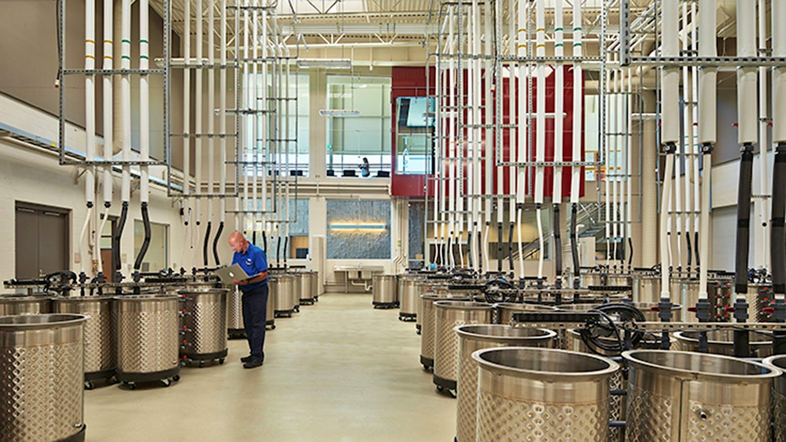 A Gift to Washington Wine's Future: Wine Spectator Scholarship Foundation Donates $1 Million to Washington State University