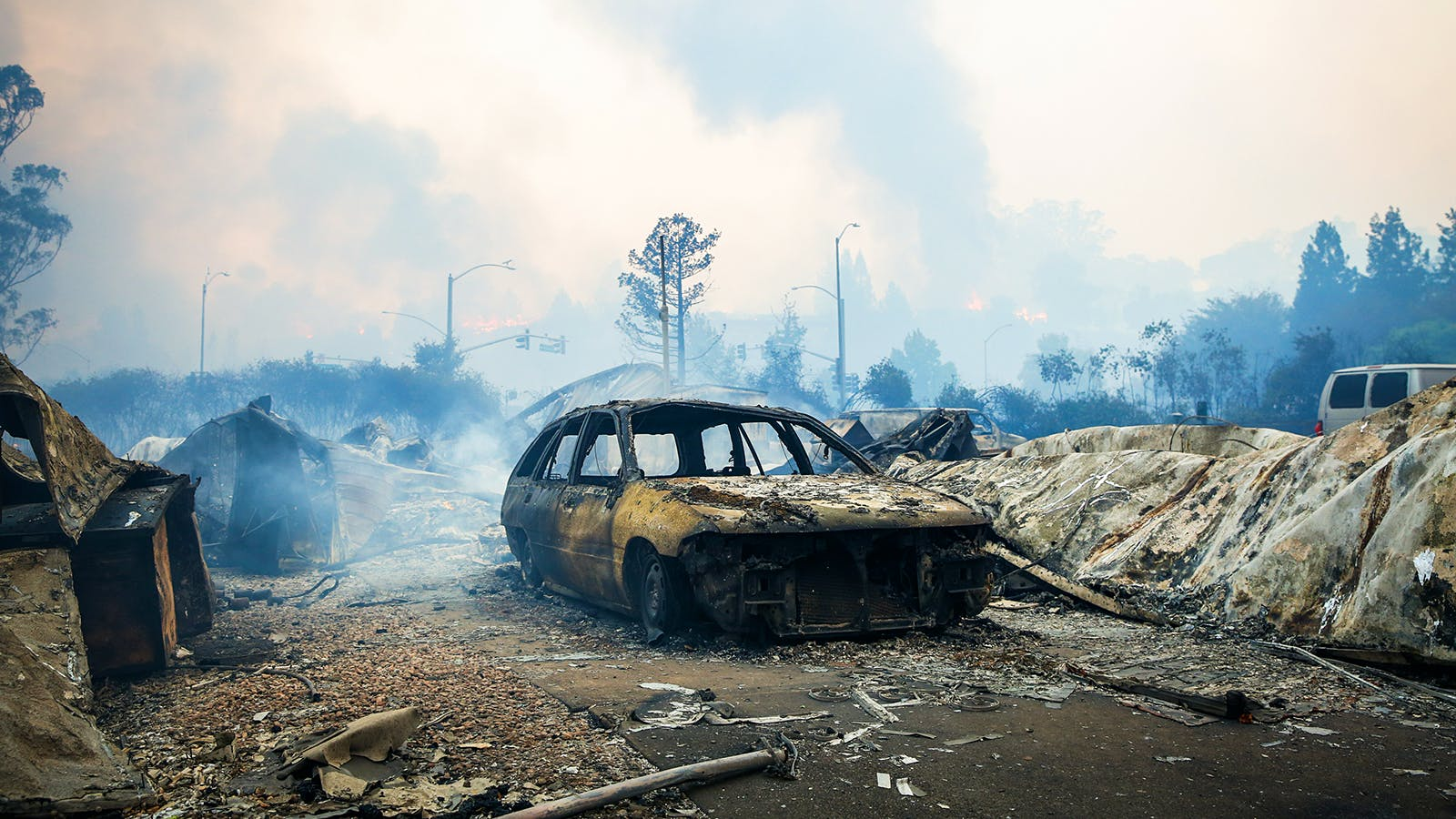 Sonoma County from the Ashes