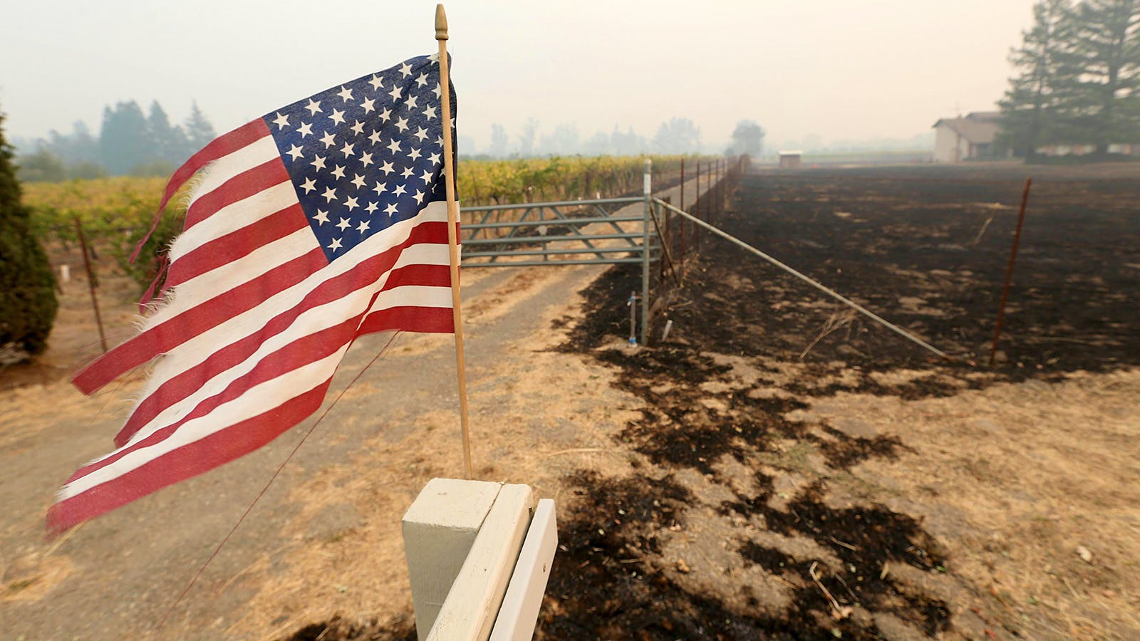 How Will California's Wine-Country Fires Impact the 2017 Vintage?