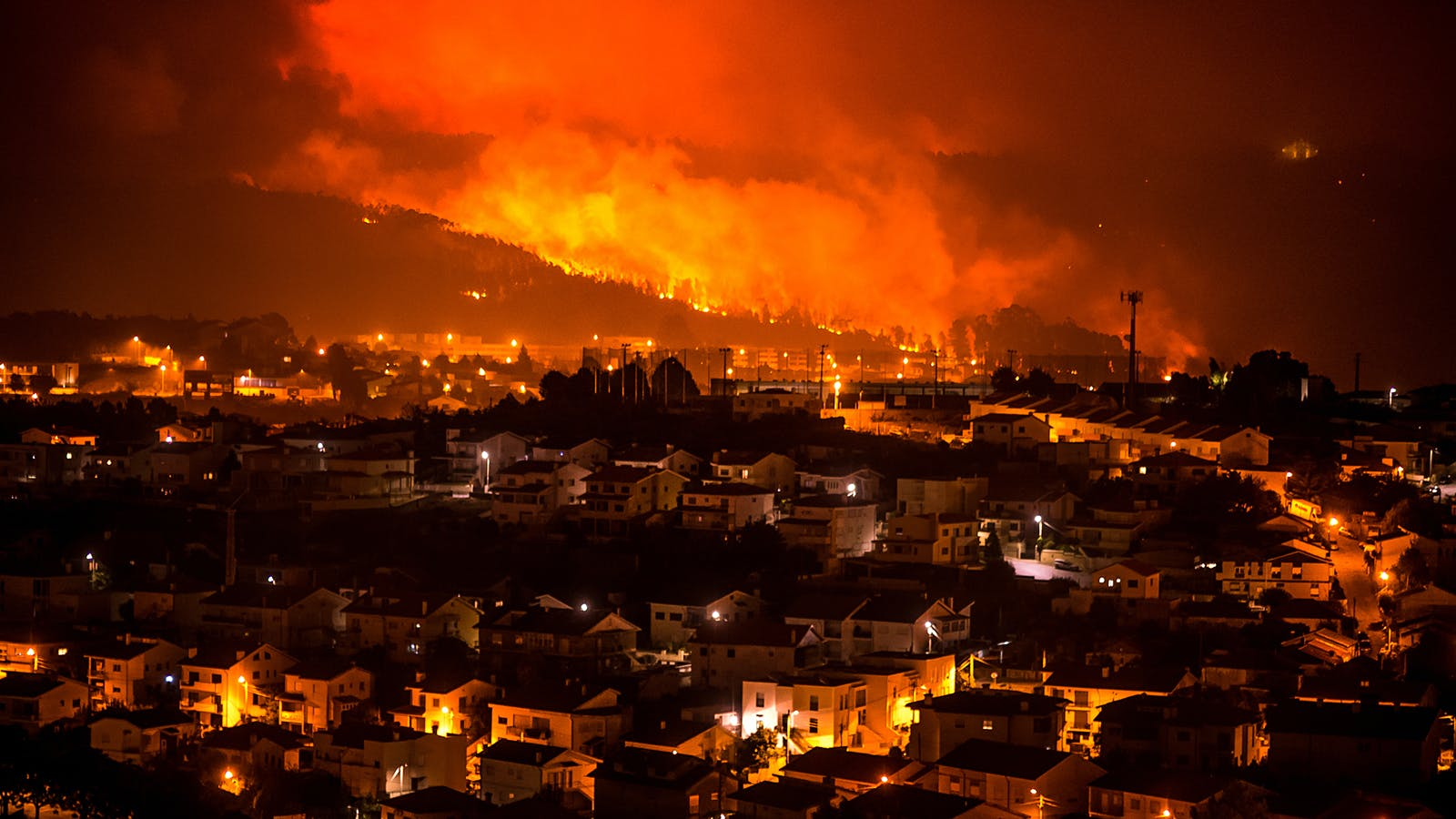 Wildfires Devastate Spanish and Portuguese Wine Regions