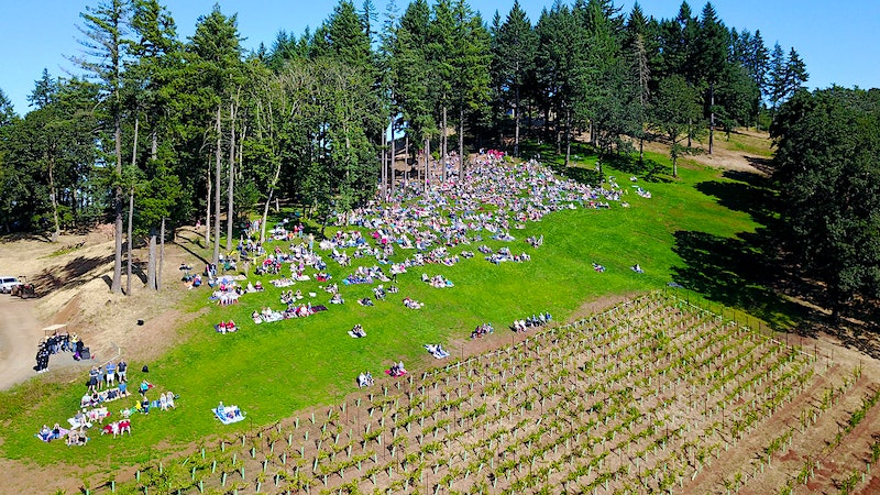 Oregon Wine Totally Overshadowed (by Eclipse)