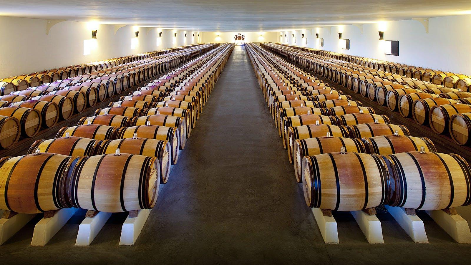 2017 Bordeaux Barrel Tastings: Top Dry Whites