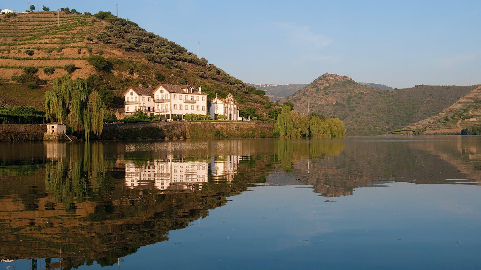 Consensus in the Douro: 2016 Vintage Port