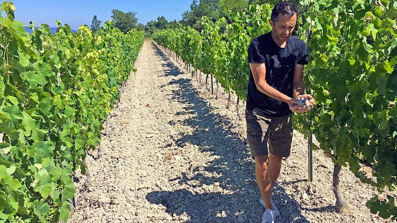 Mont Ventoux's New-Wave Peasant