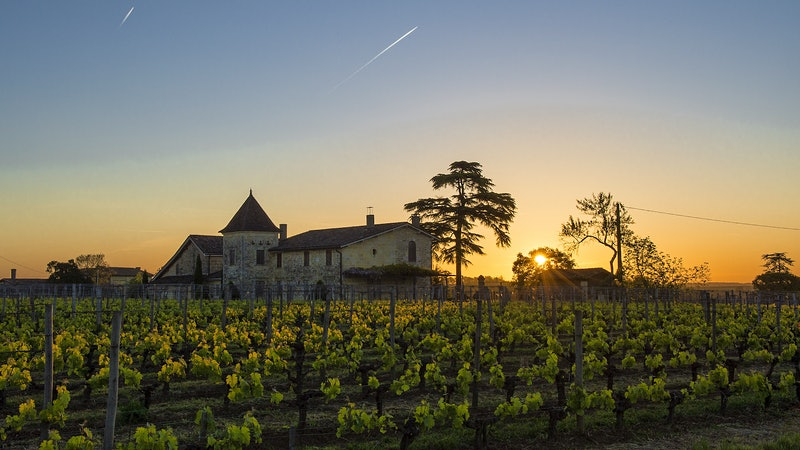 The 2018 Bordeaux Barrels Diary: A Right Bank Bonanza, Part 1