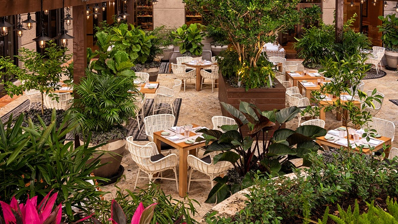Exciting New Restaurant Opens in Miami's Ritz-Carlton Coconut Grove