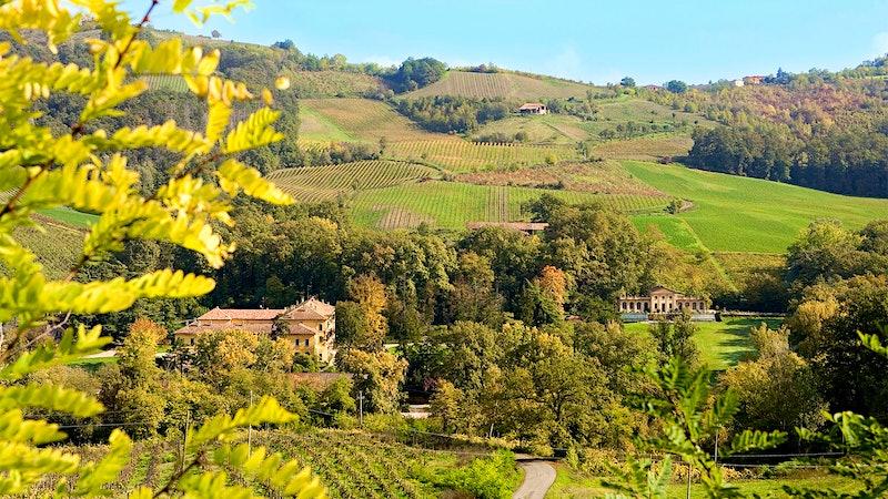 Italy's Prime Pinot Nero