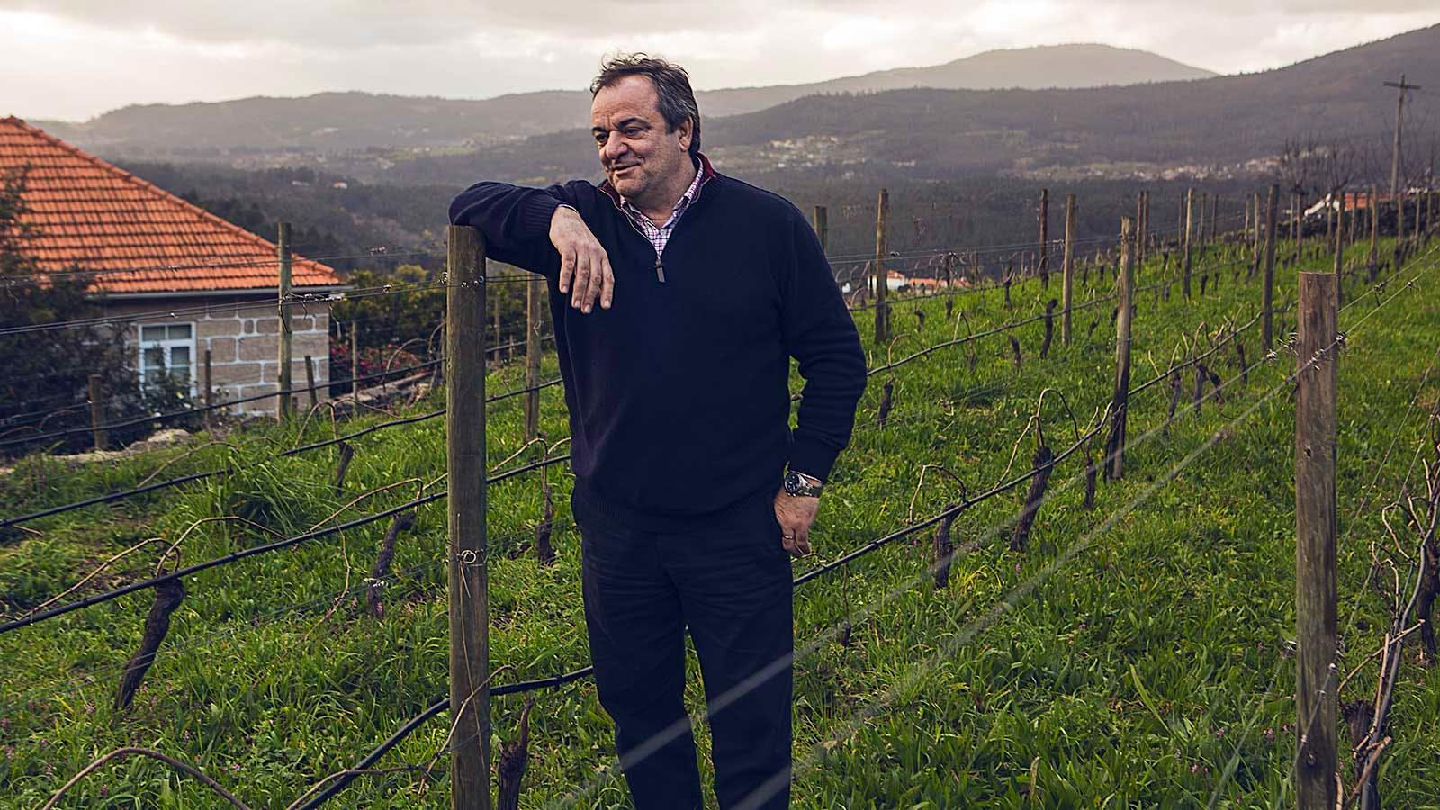Portuguese Wine Company Esporão Looks to Vinho Verde, Buying Quinta do Ameal