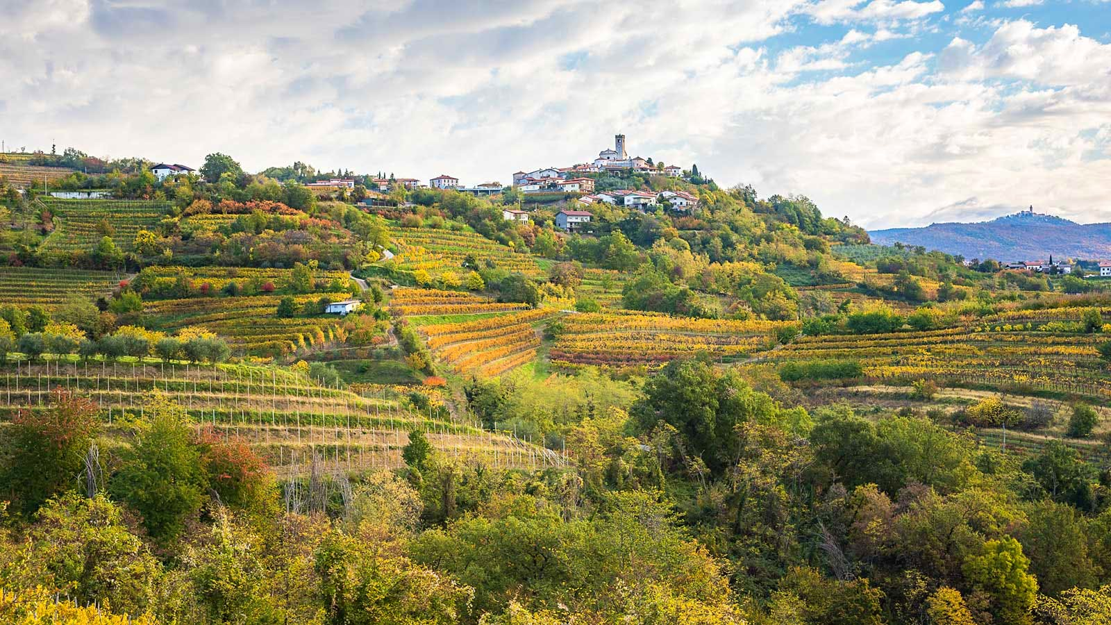 The Next Great Wine Country? It Might Be Slovenia