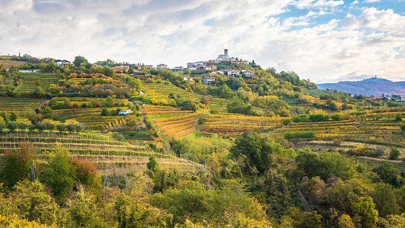 The Next Great Wine Country?