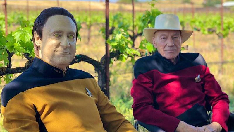 在星际旅行的酒庄葡萄园皮卡德抢先看
