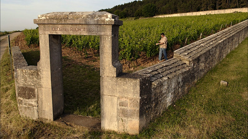 The Gold Standard of Gevrey-Chambertin