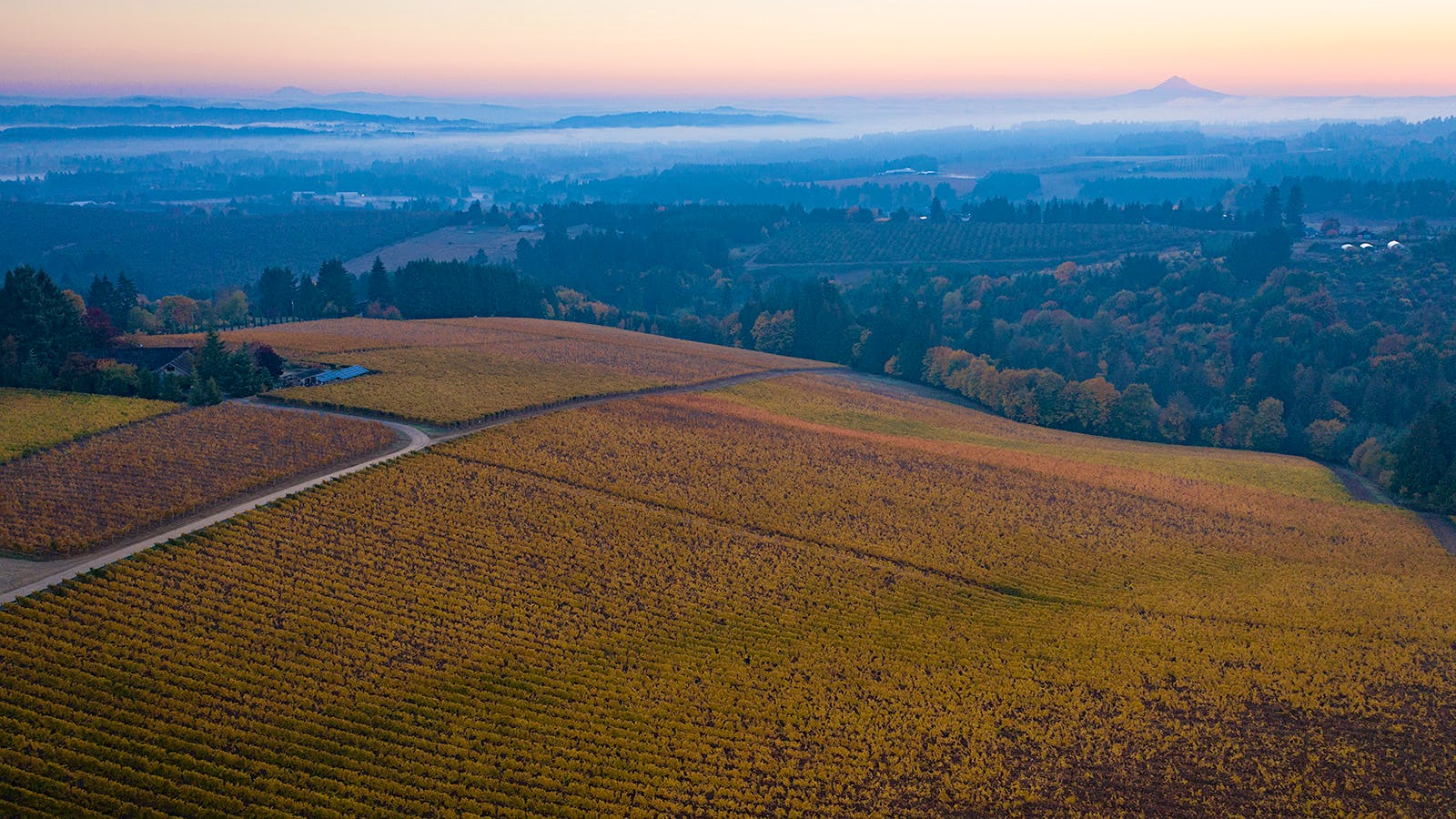 Oregon Gains Two Wine Appellations