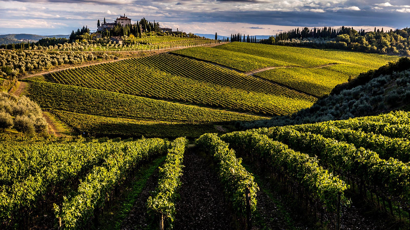 7 Food-Friendly Tuscan Reds at 90+ Points