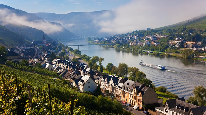 Quiz: Cool White Wines of Germany, Austria and Beyond