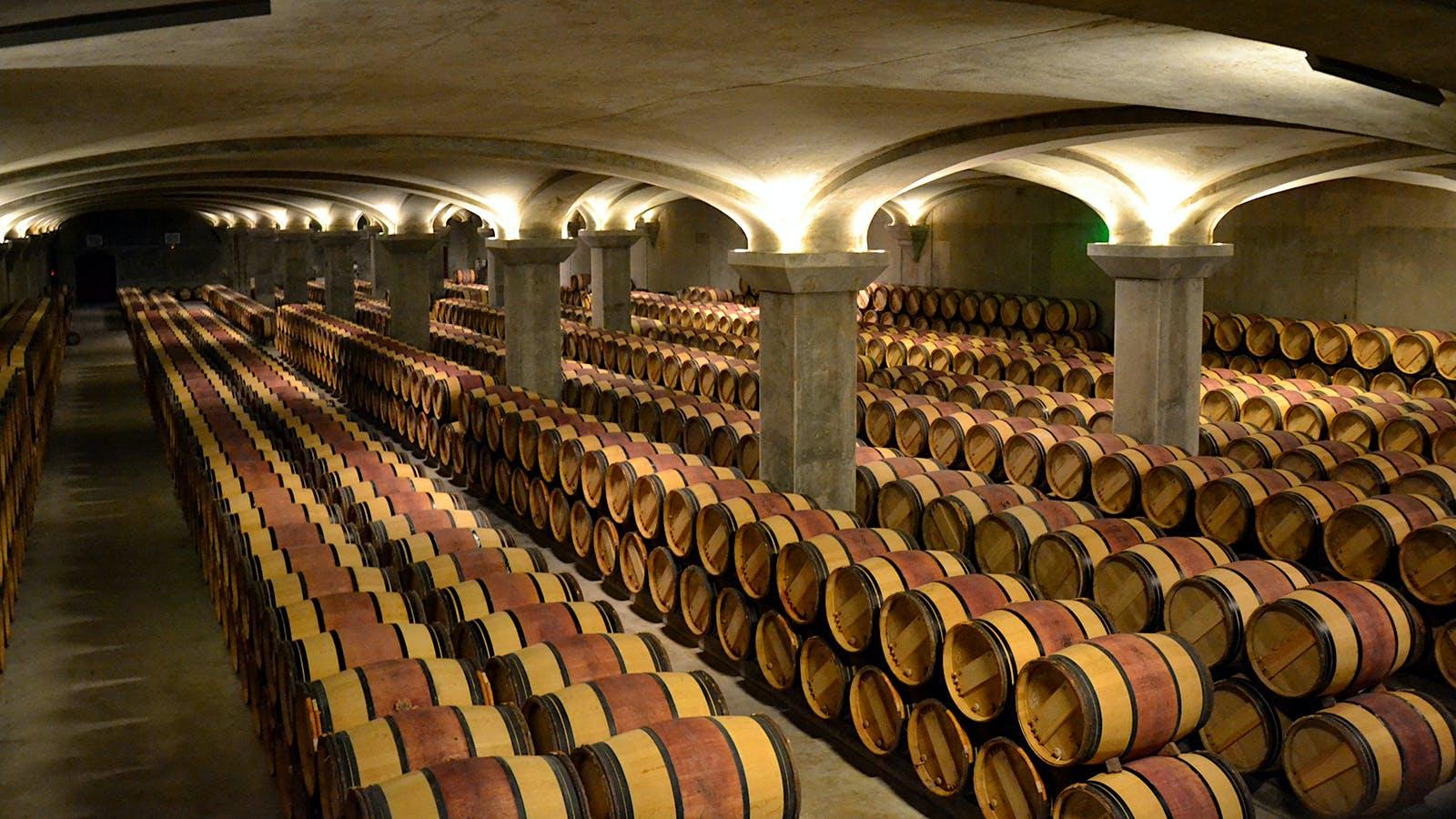 French Researchers Unlock a Secret to Wine Bitterness: Oak Barrels