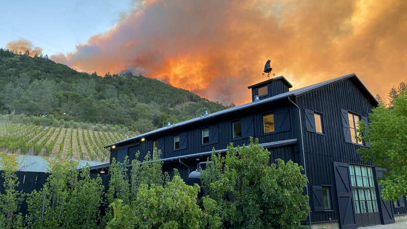 Fast-Moving Wildfire Erupts in Napa, Striking Another Blow to 2020 Harvest