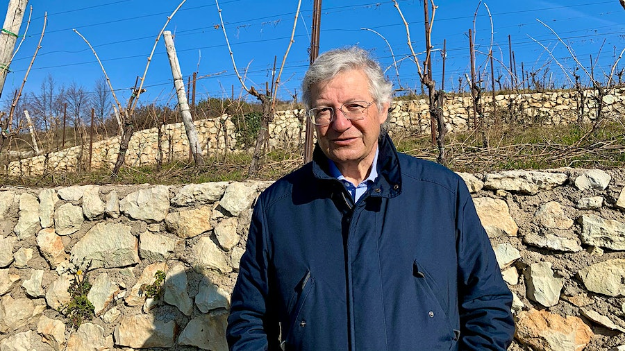 Though he is renowned for his Amarones, Brigaladara's Stefano Cesari is now championing more affordable Valpolicella Superiore.
