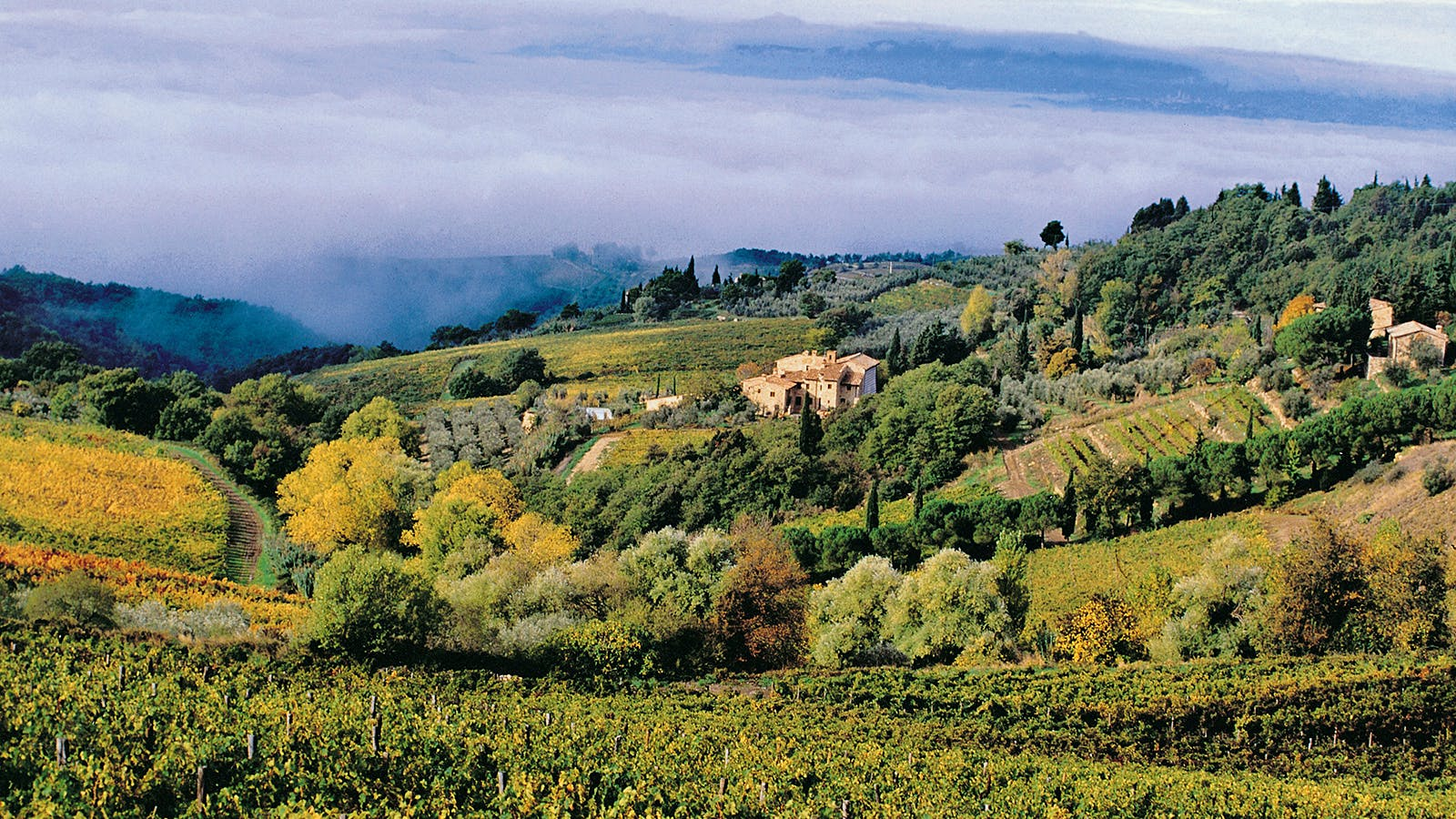 8 Diverse Chianti Classicos Up to 91 Points