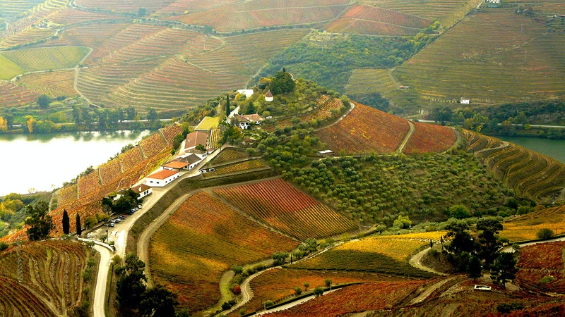 8 Distinct Portuguese Wines Up to 91 Points