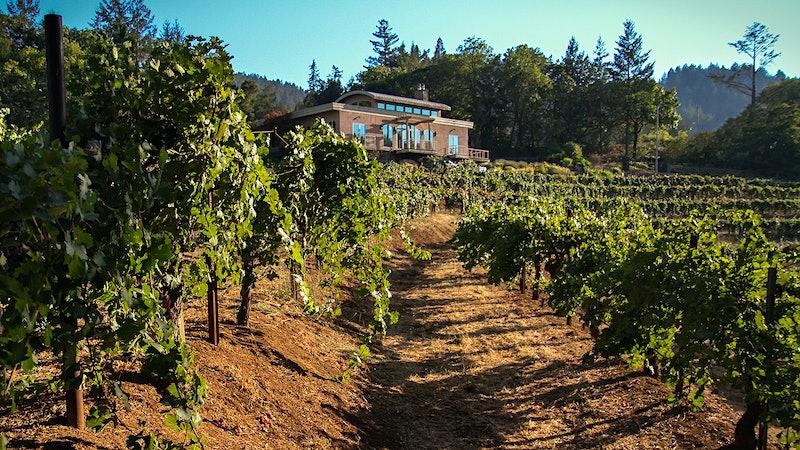Wine Talk: Diamond Creek's New Guard