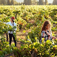 Robin McBride, left, and Andréa McBride John learned from winemakers and grapegrowers as they started their company as a boutique import firm.Wine's Dynamo Sister Team