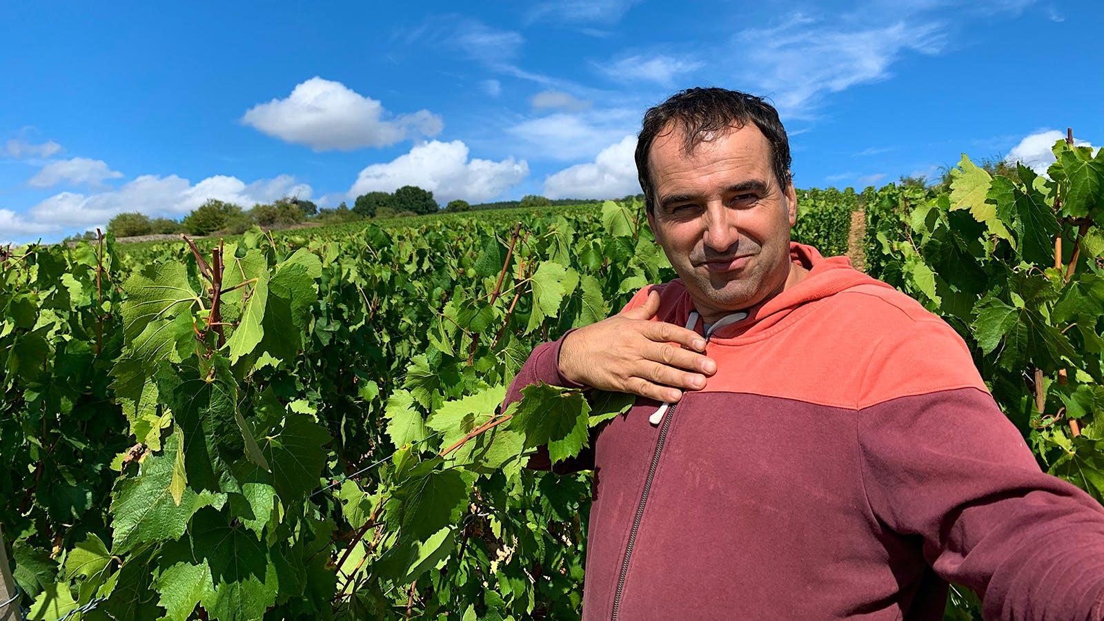 A Champion of Burgundy's Underdog