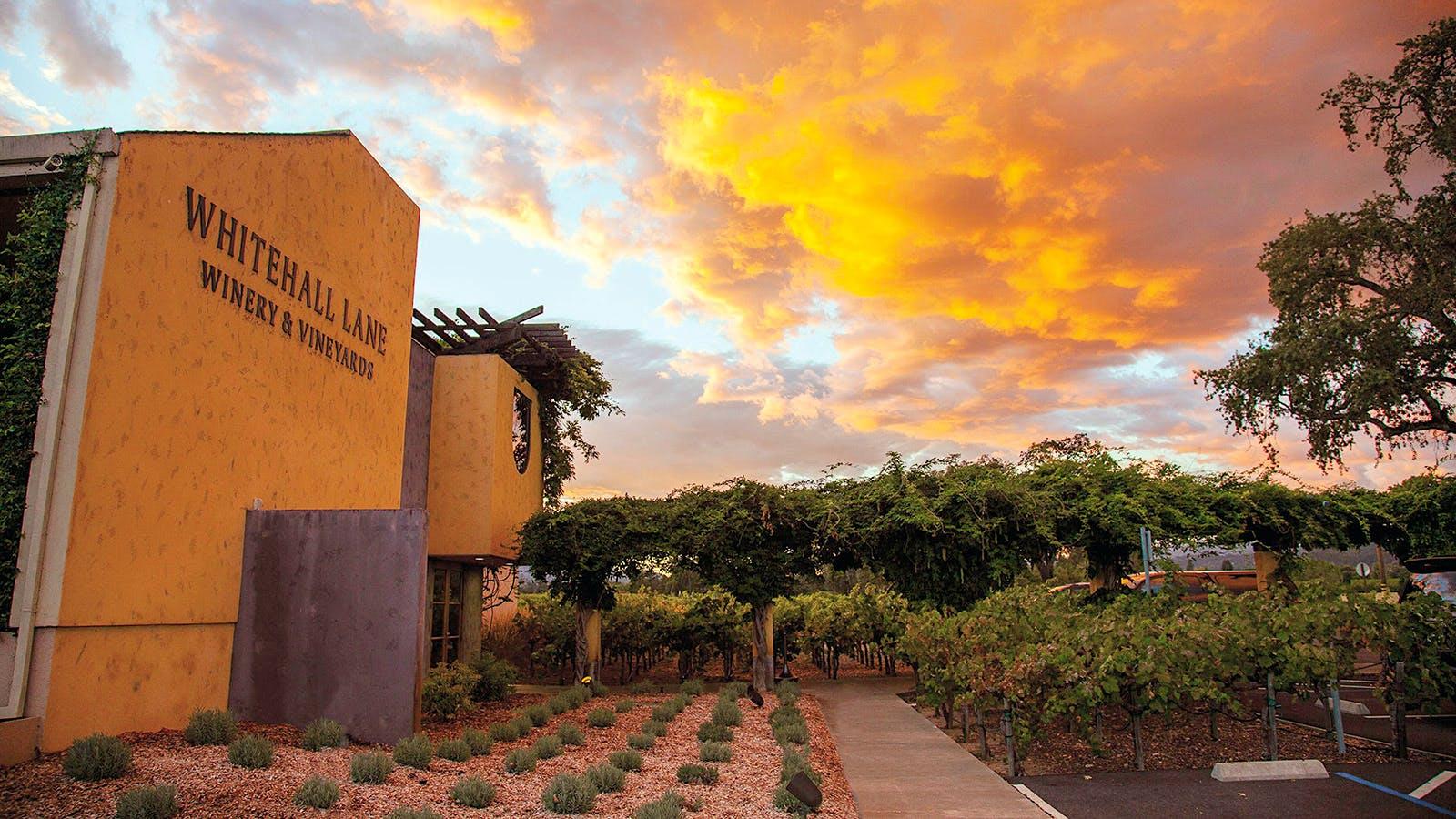 10 Refreshing California Sauvignon Blancs Up to 91 Points