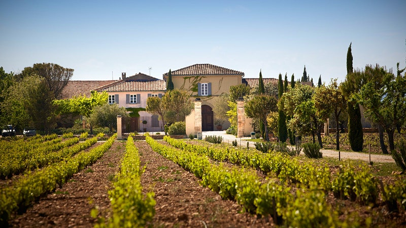 9 Exciting Côtes du Rhônes Under $20
