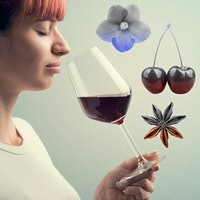 COVID-19 patients report losing their sense of smell and finding their wine tasteless.Why Can't I Smell? Doctors and Scientists Are Working to Understand COVID-19