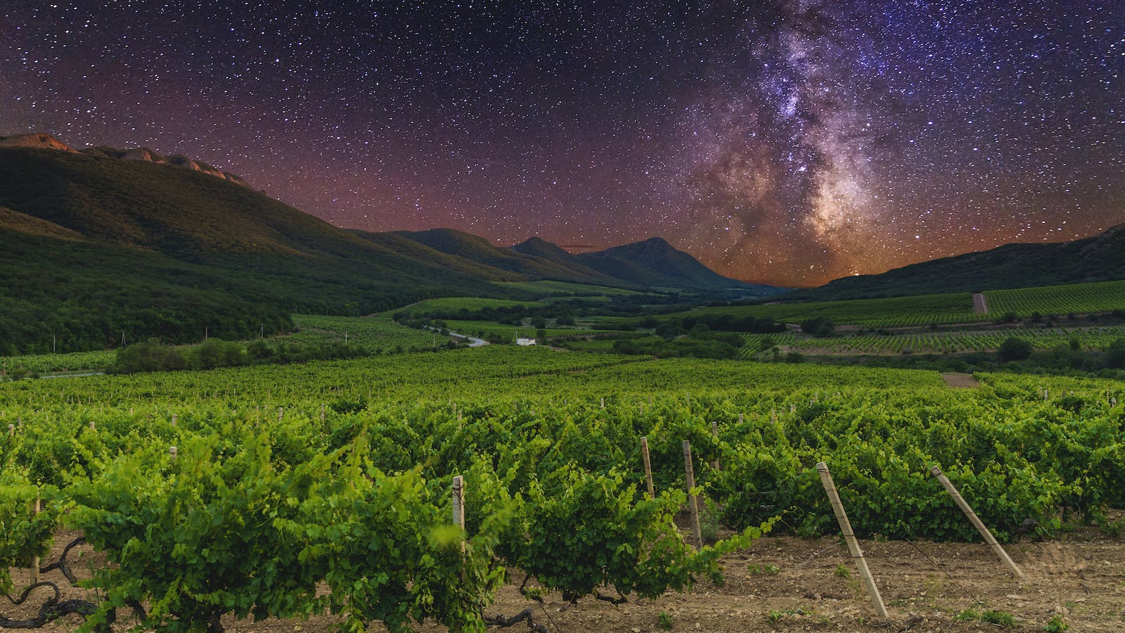 A Year in Space: Bordeaux Wine Splashes Down