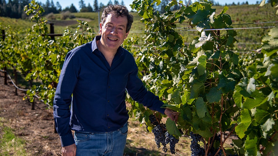 Peter Gago in Beringer's Bancroft Ranch Vineyard in Napa; Penfolds was able to tap prime vines belonging to sister wineries.