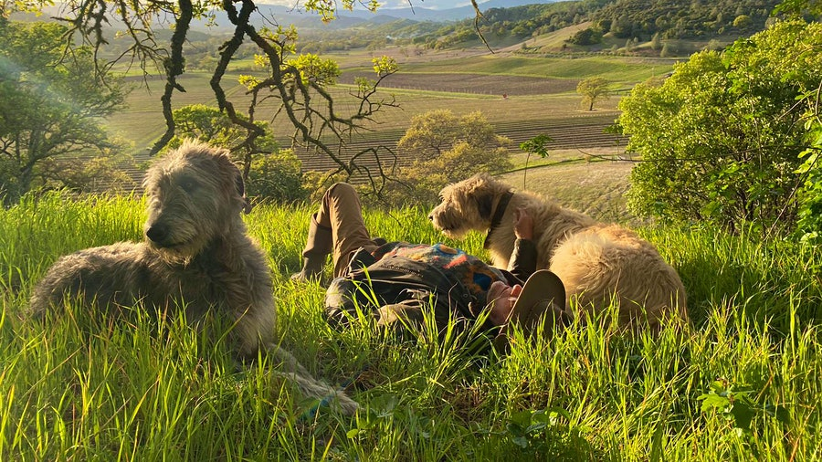 Finn (left) and Lir take a break with Xavier Cervantes, founder of Cervantes Family Vineyard in Napa County's Pope Valley.