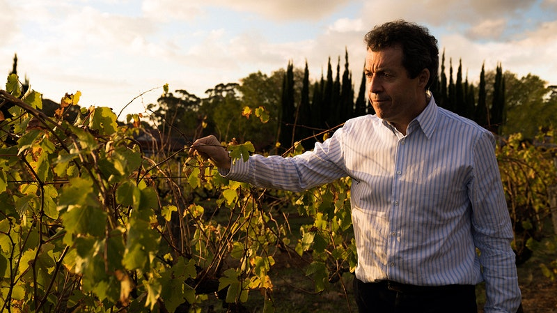Penfolds' Peter Gago Talks Blending California and Australia