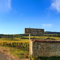 """Road sign for """"Route des Grands Crus"""" vineyards in France.Quiz: Top Vineyards"""