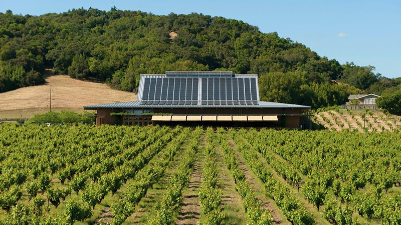 9 Outstanding Napa and Sonoma Reds
