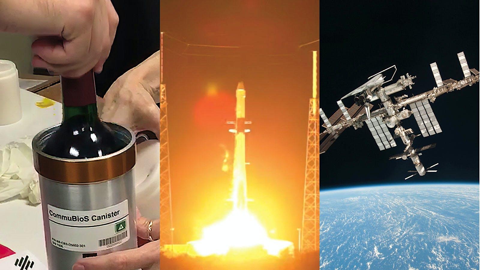 Bordeaux in Space