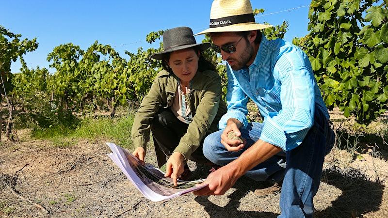 Proof of <em>Terroir</em>? Researchers Dig Deep into Argentine Malbec