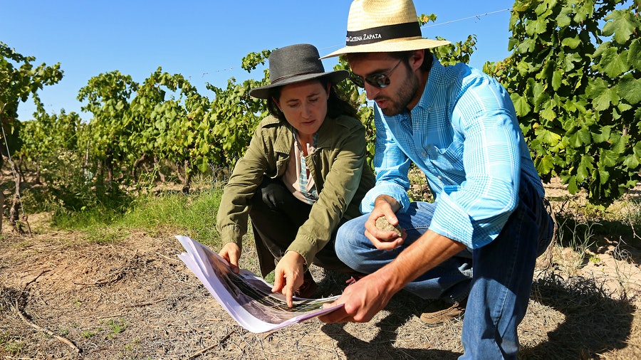 Dr. Laura Catena and Fernando Buscema in the vineyard